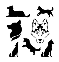 Silhouette of a dog of breed siberian husky vector