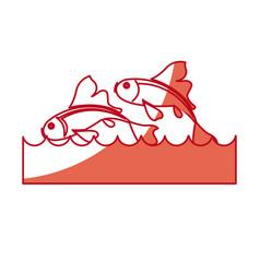Japanese koi fish water dorsal image vector