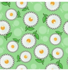 Jolly chamomile on seamless backgroundflower vector