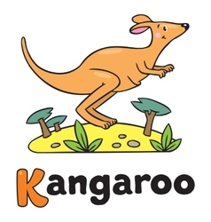little kangaroo for abc alphabet k vector image