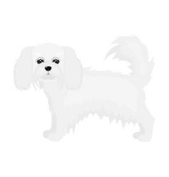 Spaniel single icon in monochrome stylespaniel vector