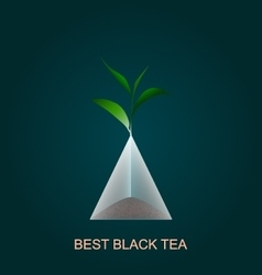 Isolated pyramid of black tea with branch vector