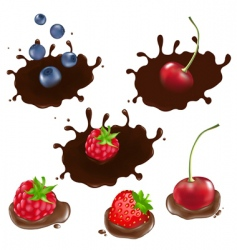 berry in chocolate vector image vector image