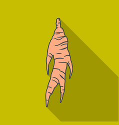 Ginseng icon in flate style isolated on white vector