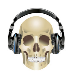 Human skull and headphones vector