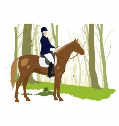 horse rider in forest vector image