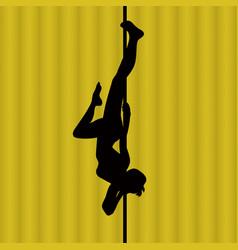 pole dance woman vector image vector image