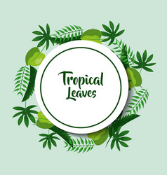 Tropical leaves poster card round decoration vector