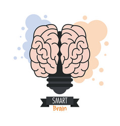 Brain design mind concept white background vector