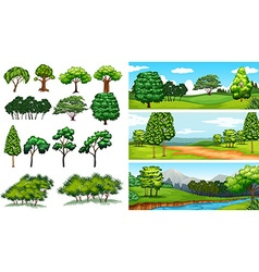 Nature scenes with trees and fields vector