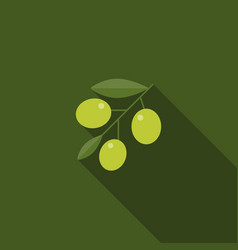green olive with leaves icon vector image