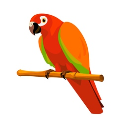 Red parrot on a perch vector