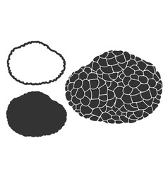 Truffle vector image vector image