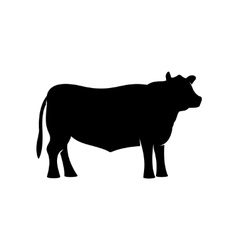 Black angus beef bull standing silhouette vector
