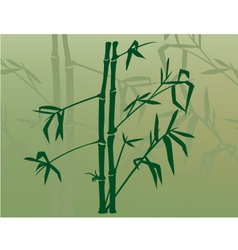 bamboo in the mist vector image