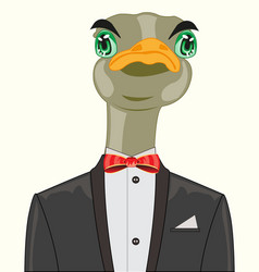 ostrich in suit vector image
