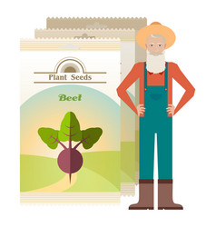Pack of beet seeds icons vector