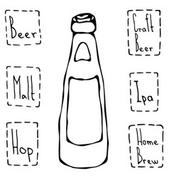 Beer bottle hand drawn vector