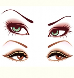women's eyes vector image