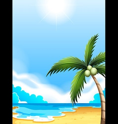 A beach with a coconut tree vector image vector image