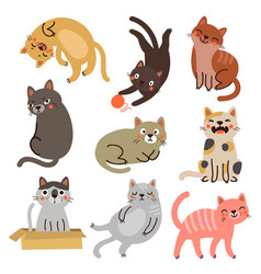 cat set collection vector image vector image