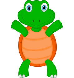 Happy green turtle cartoon vector