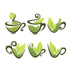 organic tea vector image vector image