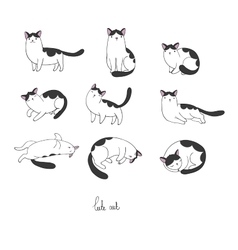 Set of different doodle poses cat pets vector