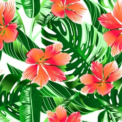 Tropical orange and pink hibiscus flowers seamless vector