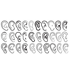 Cartoon ears vector image