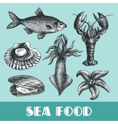 sea food vector image vector image