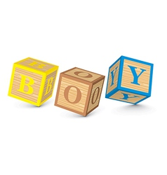 Word BOY written with alphabet blocks vector image