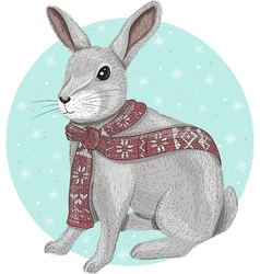 Cute rabbit with scarf winter background vector