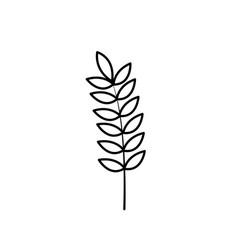 Line healthy wheat organ plant nutricious vector