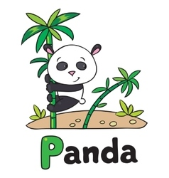 Little panda on bamboo for abc alphabet p vector