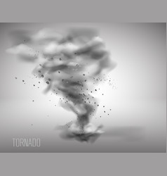 Tornado on a simple background vector