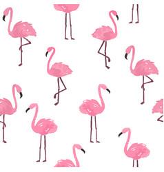 Cute flamingo background vector