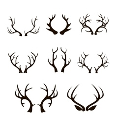 deer antlers silhouette isolated on white vector image