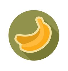 Banana flat icon tropical fruit vector