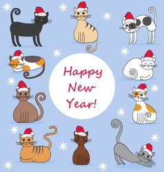 cats in new year caps vector image vector image