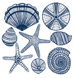 hand-drawn maritime set vector image