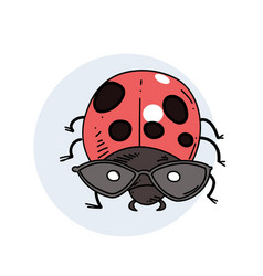 ladybug hand drawn image vector image
