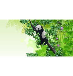 panda sitting on a tree in the jungle vector image