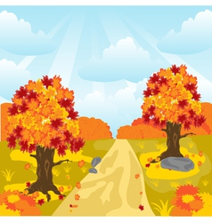Lane in autumn wood vector