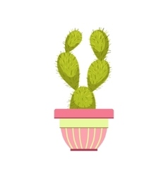 Cactus in pink pot vector
