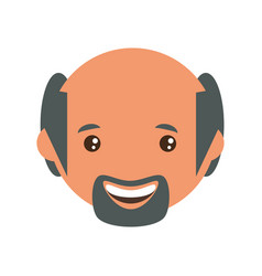 adult male bald head vector image