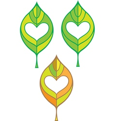 leaf with heart in it vector image