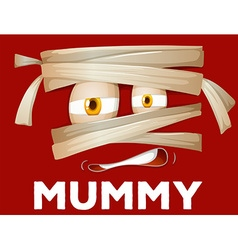Mummy wrapped with cloth vector
