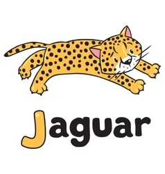 Little cheetah or jaguar for abc alphabet j vector