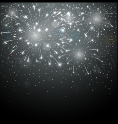 Beautiful fireworks on night background vector image